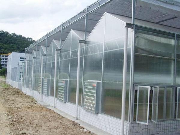 有实力的温室大棚配件生产厂家倾情推荐-河北薄膜连栋温室大棚