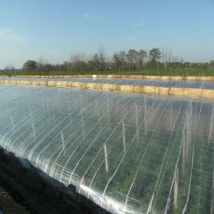 文友农膜优质五层共挤EVA农膜供应 河南三层EVA长寿流滴膜