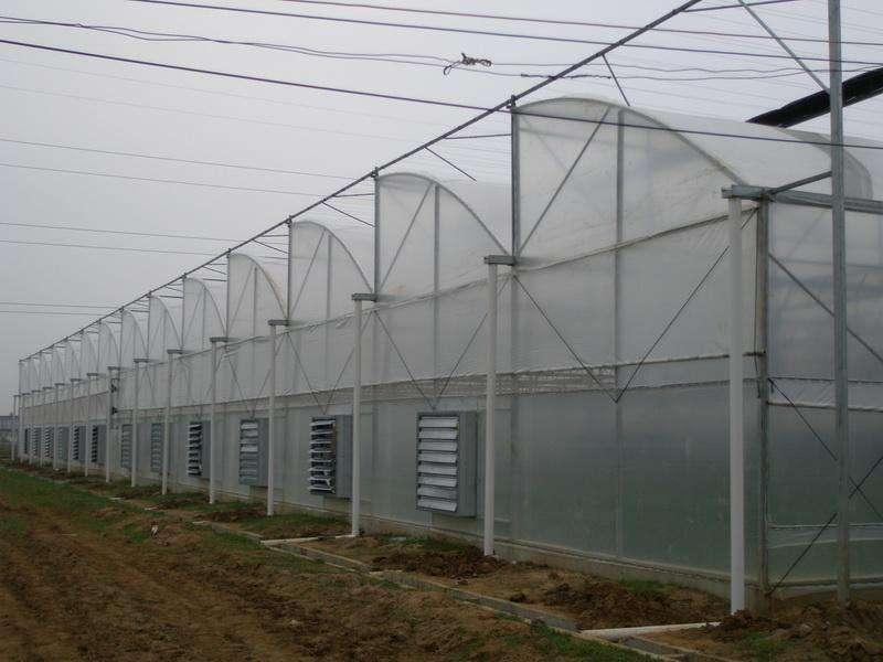 建造智能温室-优质温室大棚建设
