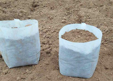 为您推荐划算的育苗袋 ——育苗袋批发商