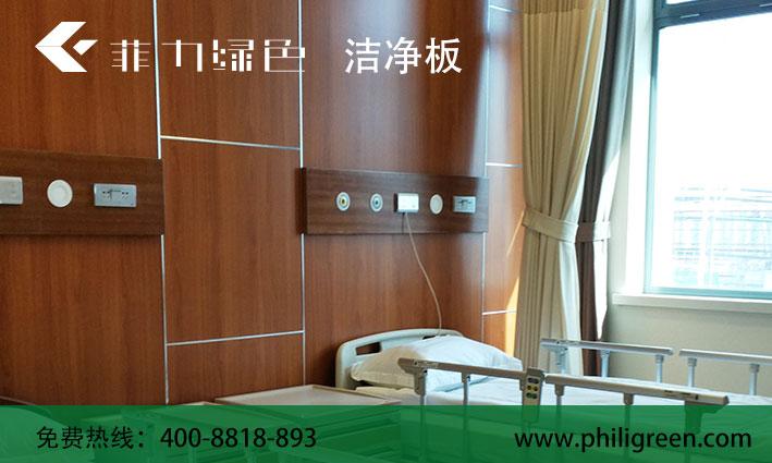 具有价值的洁净板——高质量的洁净板尽在广东菲力绿色板业