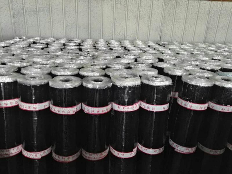山东实惠的SBS防水卷材批销 自粘橡胶沥青防水卷材批发