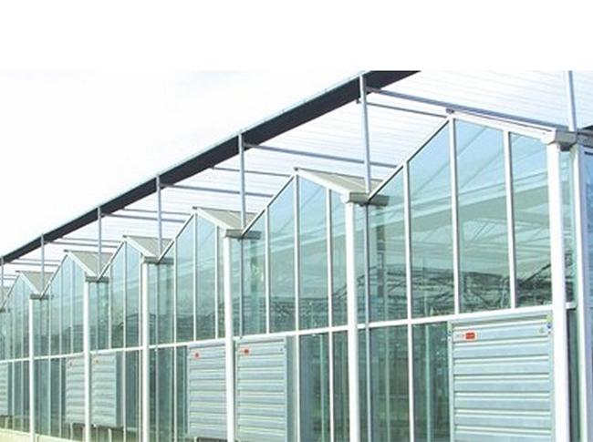 千汇温室专业承建温室大棚——温室大棚造价