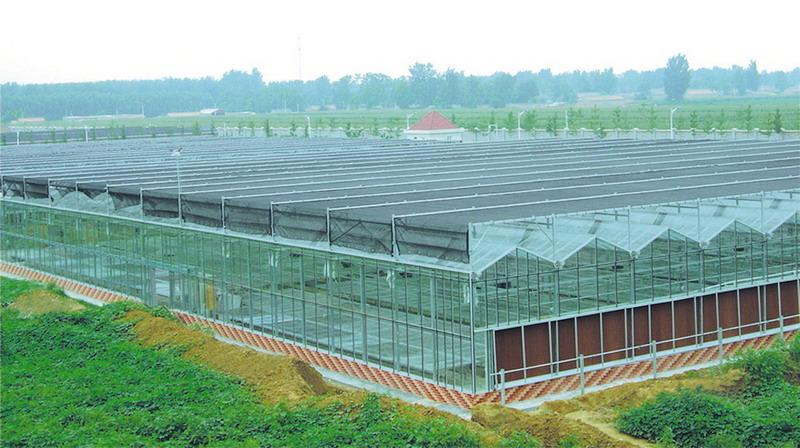 温室阳光房——潍坊日光温室厂家