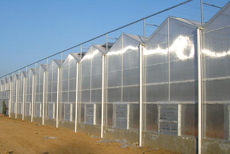 养殖大棚专业设计建造|甲鱼温室大棚