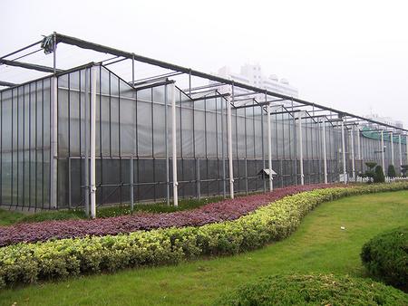 上海薄膜智能连栋温室-智能连栋温室造价是多少