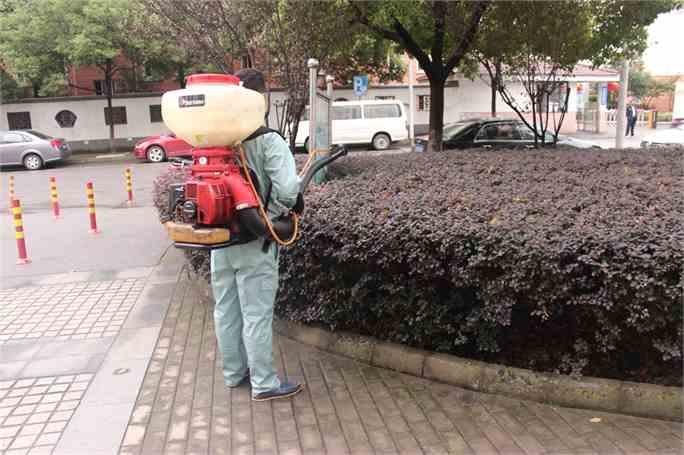 河南杀虫公司选众康环保杀虫公司,服务好