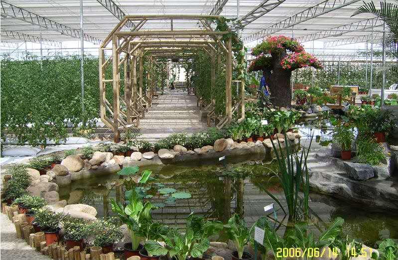 莱芜生态餐厅设计,生态餐厅建造找爱福瑞康农业科技