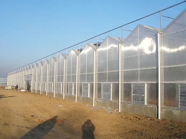 钢管立柱温室大棚建造建设_品牌好的温室大棚配件生产厂家是哪家