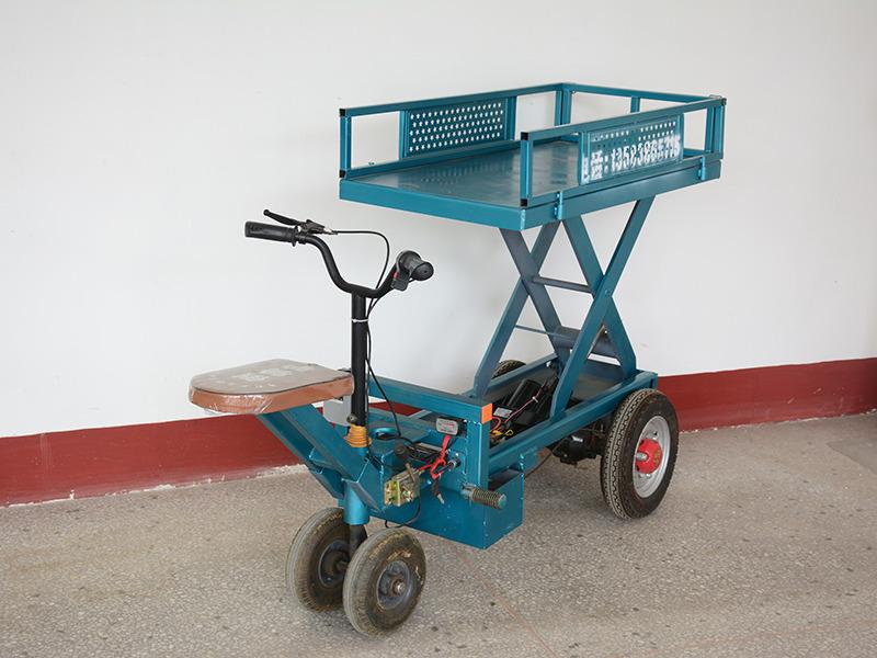 销量领先的平板车长期供应 冬青平板车