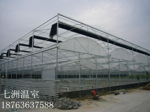 温室大棚认准七洲温室工程|连栋大棚