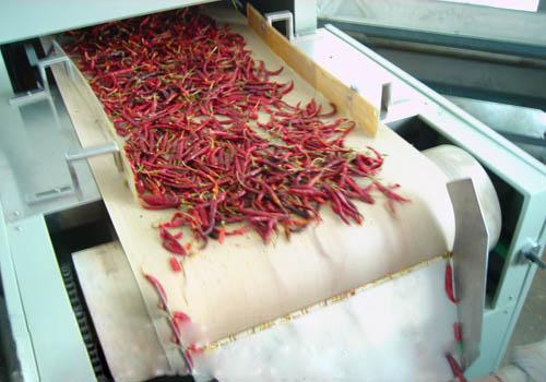 食品微波干燥供应,哪里能买到口碑好的微波盒饭快速加热设备
