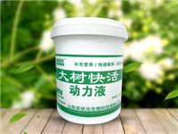 潍坊区域有信誉度的大树快活动力液厂家 大树快活动力液批发价格