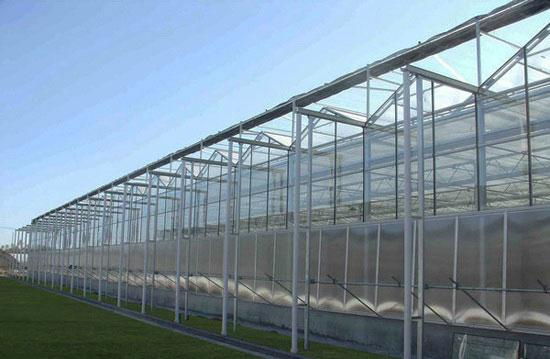 阳光板温室建造找良正温室|连栋生态餐厅温室工程