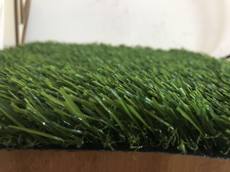 人造草坪多少钱|聚踏体育供销人造草坪【供应】