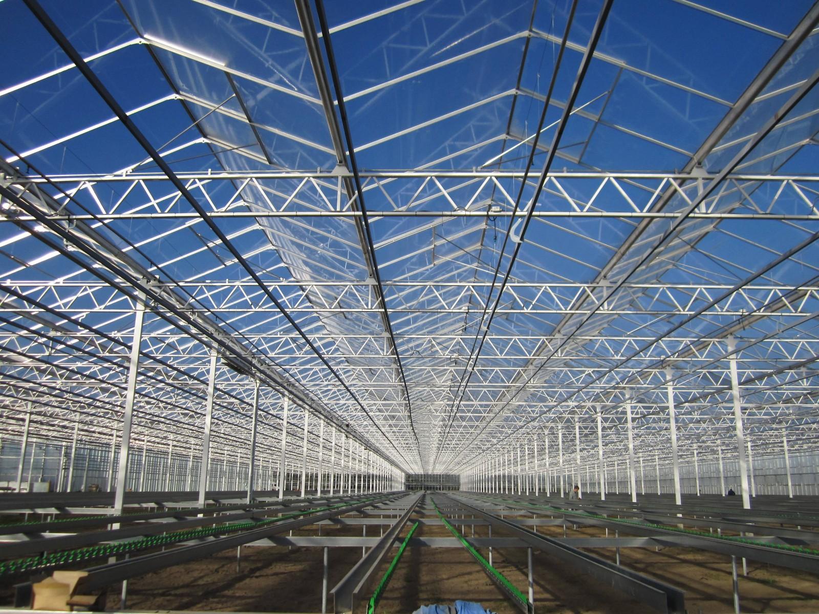 大利农业专业承建光伏蔬菜大棚|山东温室工程